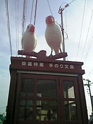 20051205_1